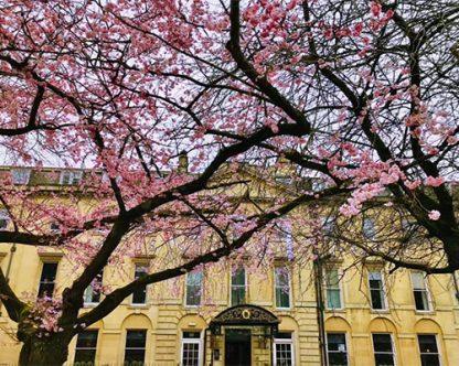 Strictly-Jane-Austen-Walk-Tour-in-Bath